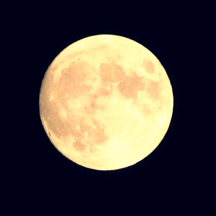 一粒万倍日&魔術のカメの日&水星順行射手座の満月🌕