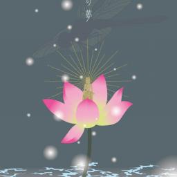 Illustrator キシダサトコ