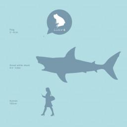 Shark Designの記事一覧 ページ2