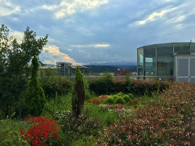 羽村市立図書館。屋上からの眺め。センチュリー21トラヤ