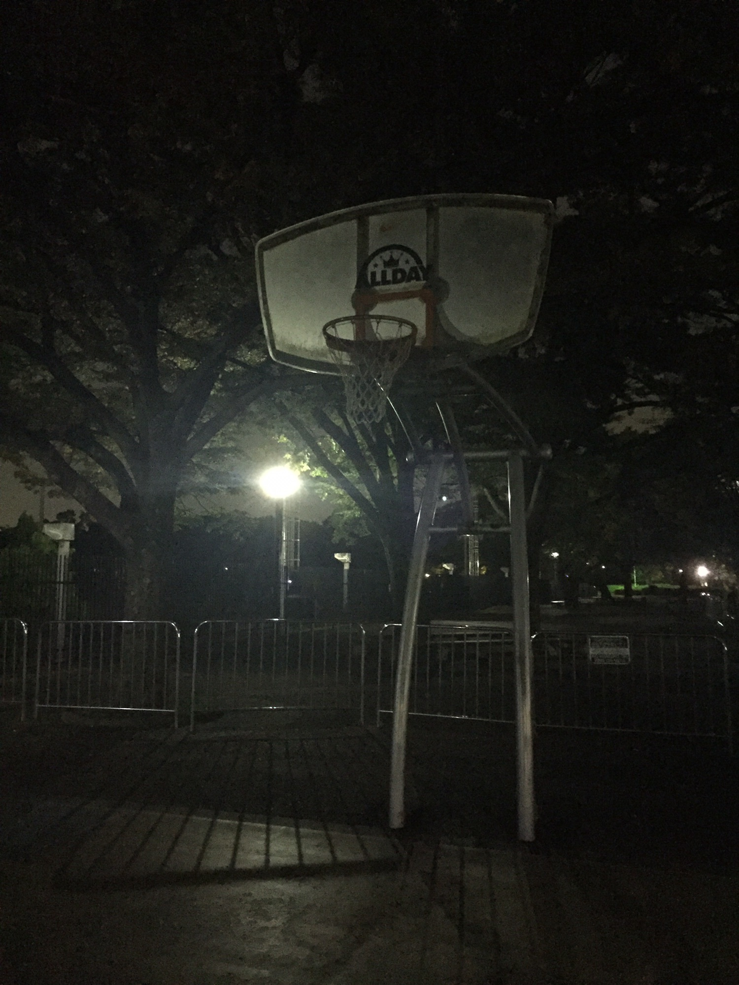 公園 バスケ 代々木