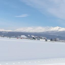 農薬をつかわない北海道のラベンダー屋 富良野ラベンダーワークス
