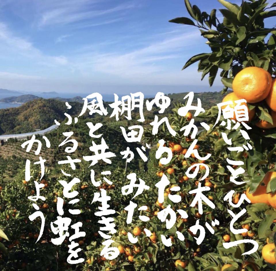 吉田の写真とリレーメッセー字1