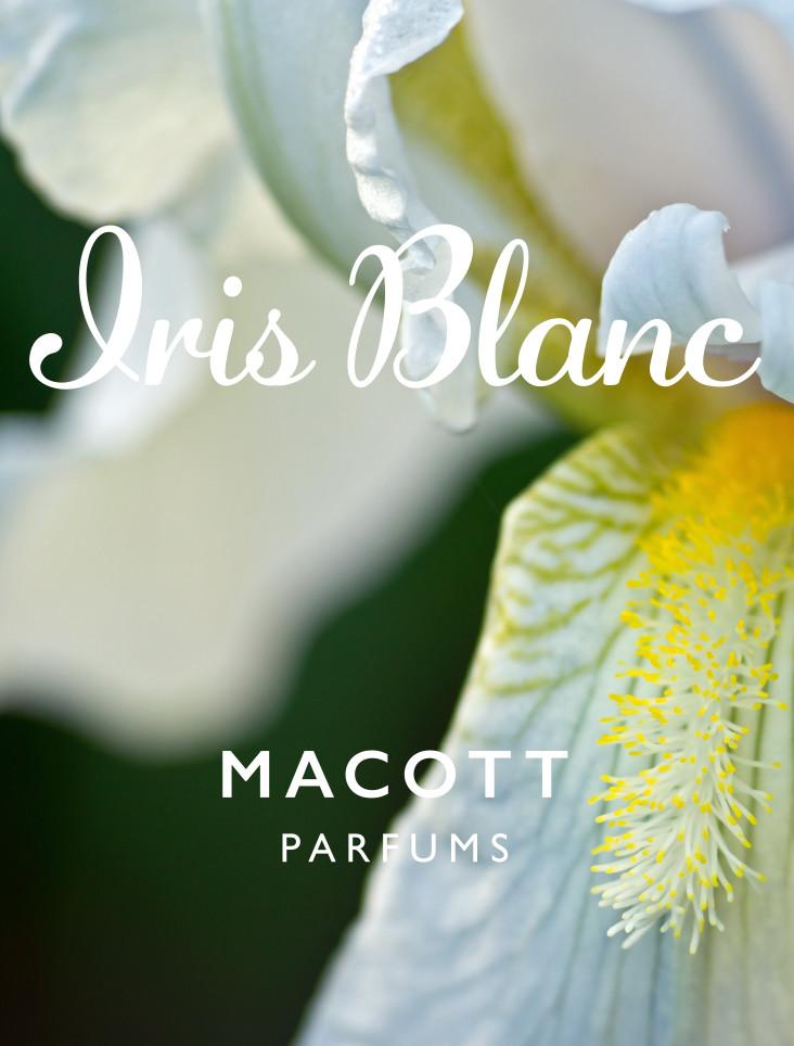 iris blanc