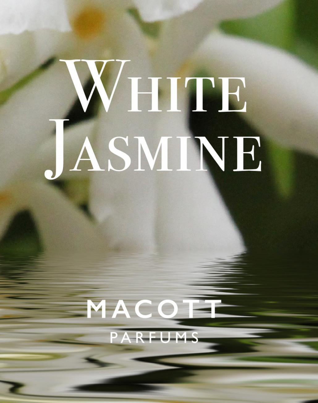 white jasimine'19