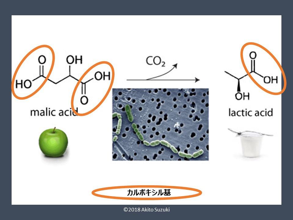 アルコール 発酵 化学式
