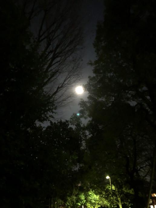 です 今日 か 満月 は
