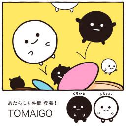 苫小牧 囲碁情報サイト Tomaigo の記事一覧 ページ2