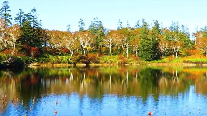 ニセコ 神仙 沼 神仙沼自然休養林休憩所 (シンセンヌマシゼンキュウヨウリンキュウケイジョ)