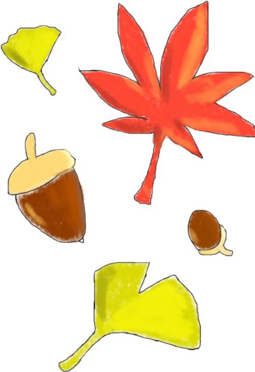 季節 秋落ち葉どんぐり なんでもイラスト なんでも揃うフリー