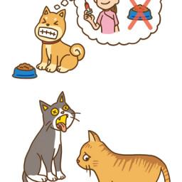 最も欲しかった 動物 イラスト 無料 Yainicon