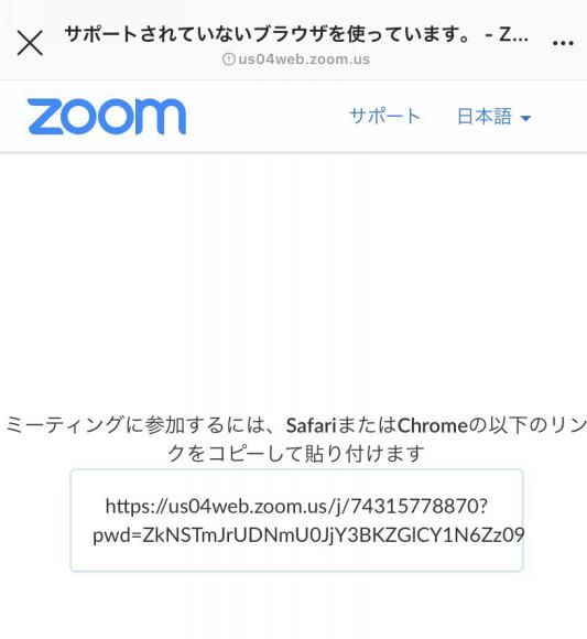 入れ ない zoom