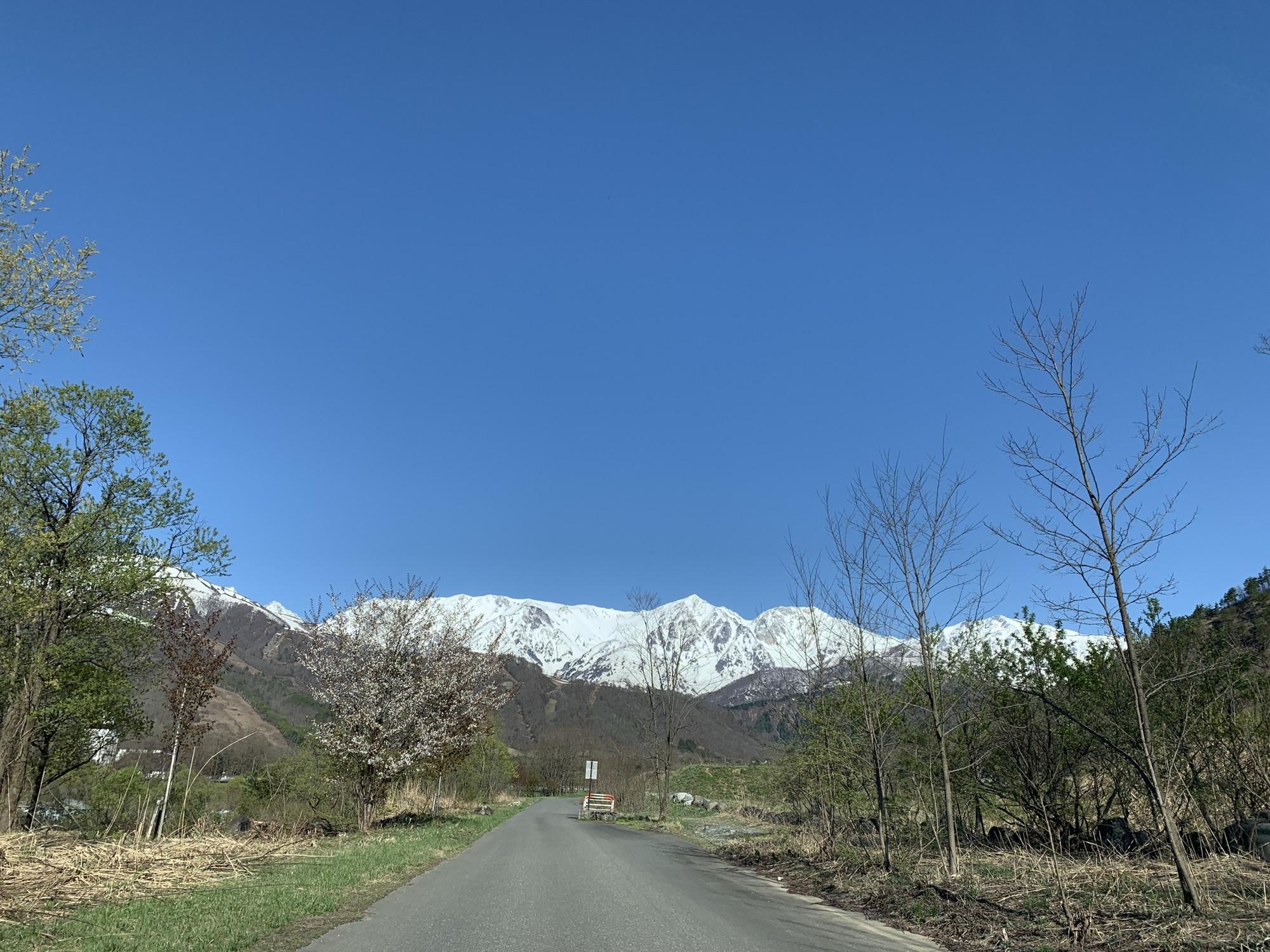 青空なら岩岳マウンテンハーバー