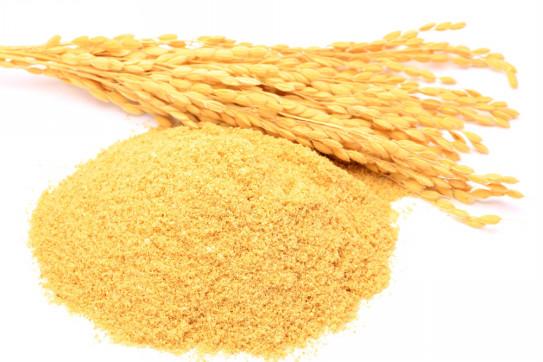 米ぬか 多糖 体